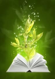 magicz.książka
